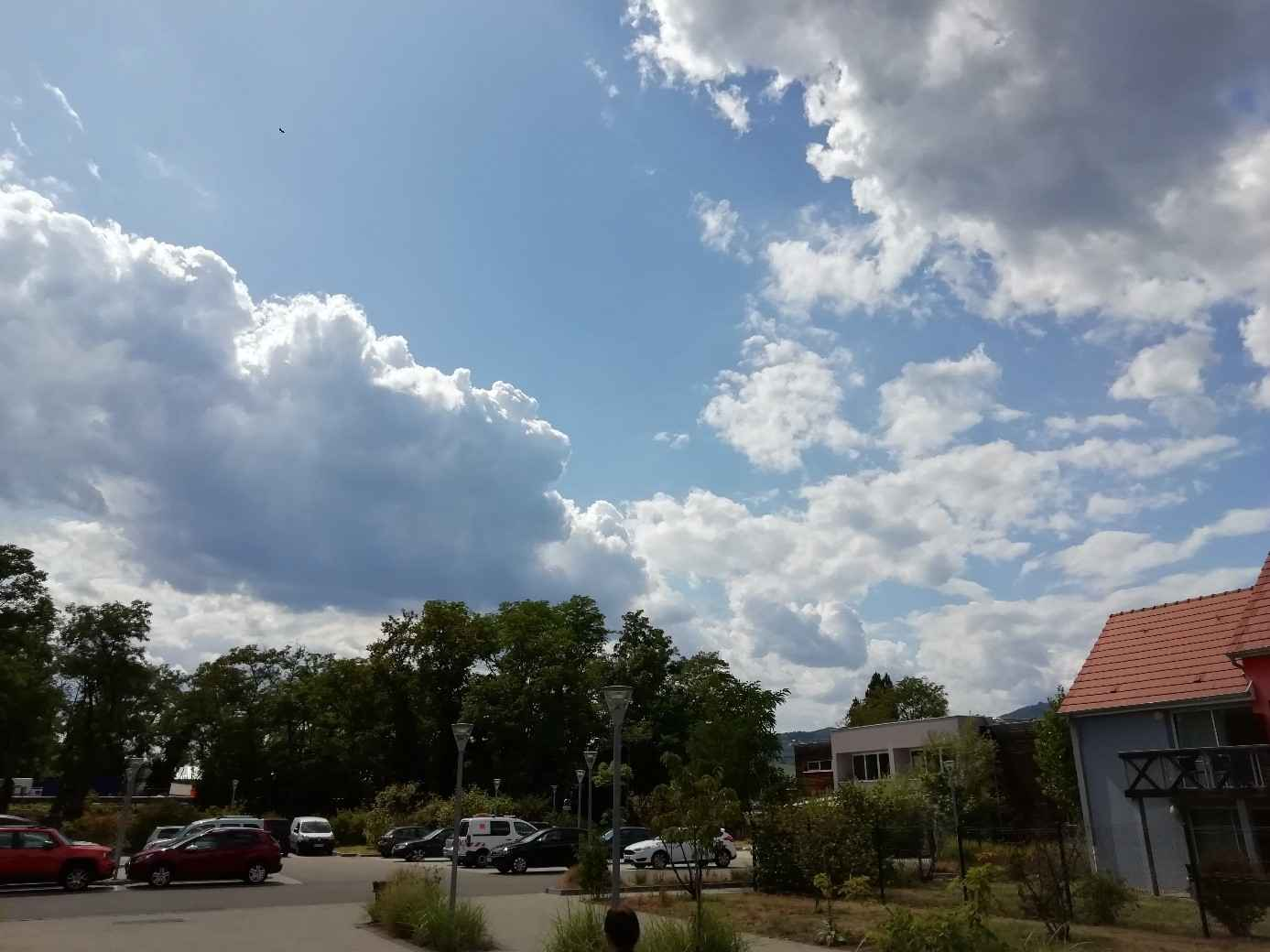 temps amelioration sur colmar comparaison observation et prevision meteo